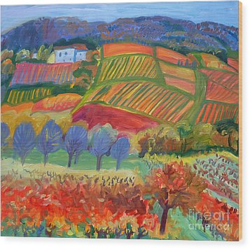 Vineyards. South Of France Wood Print