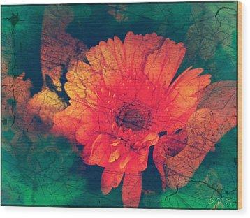 Vintage Aster Wood Print