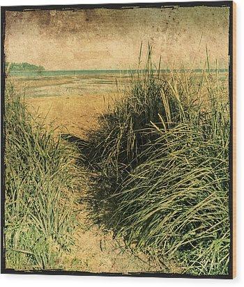 Vintage Beach  Wood Print