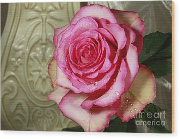 Vintage Beauty Rose Wood Print by Inspired Nature Photography Fine Art Photography