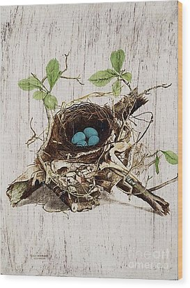 Vintage Bird Nest French Botanical Art Wood Print by Cranberry Sky