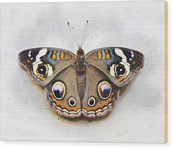 Vintage Butterfly Wood Print