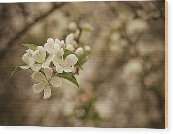 Vintage Crabapple Blossom Wood Print