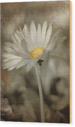 Vintage Daisy Wood Print by Joann Vitali