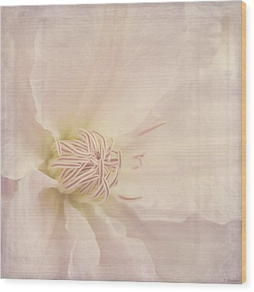 Vintage Flower Art - A Beautiful Place Wood Print by Jordan Blackstone
