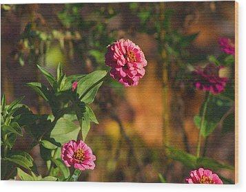 Vintage Flower Wood Print by Rhonda Humphreys