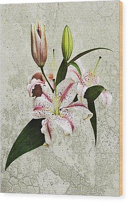 Vintage Flowers Wood Print by Lesley Rigg
