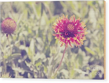 Wood Print featuring the photograph Vintage Flowers by Mohamed Elkhamisy