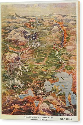 Vintage Map Of Yellowstone National Park Wood Print by Edward Fielding