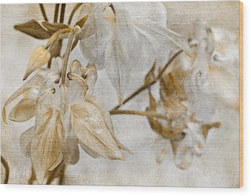 Wood Print featuring the photograph Vintage Neutral Flowers by Peggy Collins