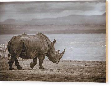 Vintage Rhino On The Shore Wood Print
