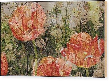 Vintage Tulips Wood Print by France Laliberte