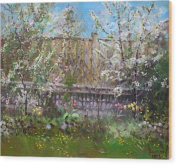 Viola's Apple And Cherry Trees Wood Print by Ylli Haruni