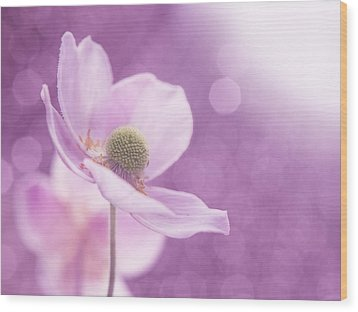 Wood Print featuring the photograph Violet Breeze 4x3 by Lisa Knechtel