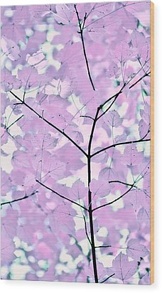 Violet Lavender Leaves Melody Wood Print by Jennie Marie Schell