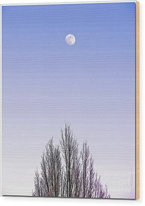Wood Print featuring the photograph Violet Moon And Treetop by Chris Anderson