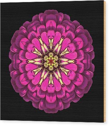 Violet Zinnia Elegans Flower Mandala Wood Print by David J Bookbinder