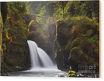 Virgin Creek Falls Wood Print by Chris Heitstuman