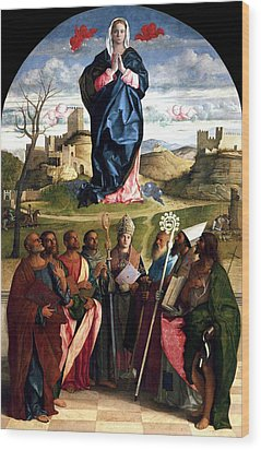 Virgin In Glory With Saints 1515 Giovanni Bellini Wood Print by Karon Melillo DeVega