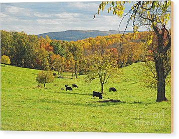 Wood Print featuring the photograph Virginia Autumn by Olivia Hardwicke