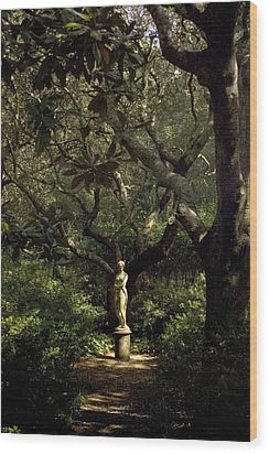Wood Print featuring the photograph Virginia Dare Statue by Greg Reed