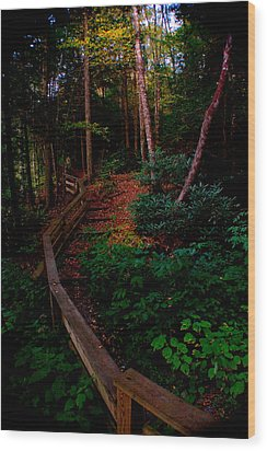 Wood Print featuring the photograph Virginia Morning by Jon Emery