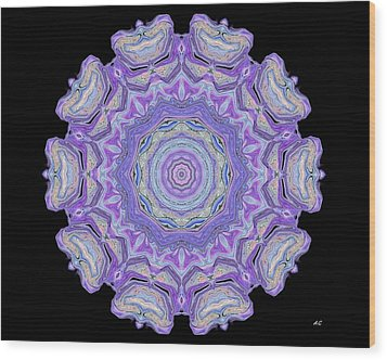 Wood Print featuring the digital art Vision Wheel by Aliceann Carlton