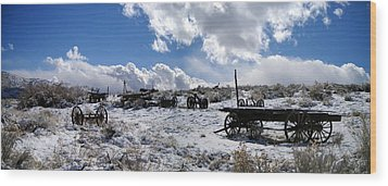 Wood Print featuring the photograph Visiting The Wild West by Marilyn Diaz