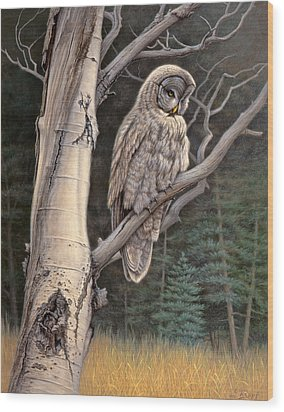 Visitor From The North-great Grey Owl Wood Print