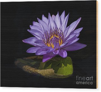 Visitor To The Water Lily Wood Print by Roman Kurywczak
