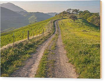 Vista Grande Trail And Mt Diablo Wood Print