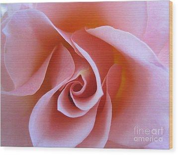 Vivacious Pink Rose Wood Print