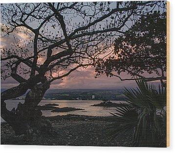 Volcanic Sunset On Hilo Bay - Big Island Wood Print by Daniel Hagerman