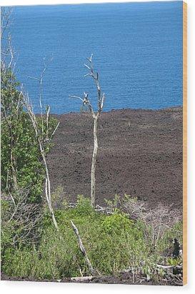 Volcano Rocks - Ile De La Reunion - Reunion Island Wood Print by Francoise Leandre