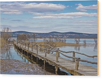 Vransko Lake Nature Park Bird Observatory Wood Print by Brch Photography