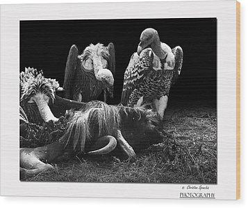 Vulture Wood Print by Christine Sponchia