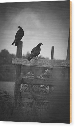 Wood Print featuring the photograph Vultures On Fence by Bradley R Youngberg