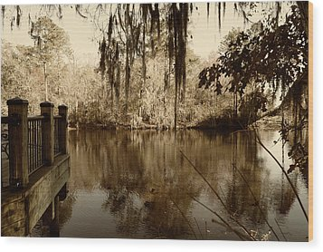 Waccamaw River In Autumn Sepia Wood Print