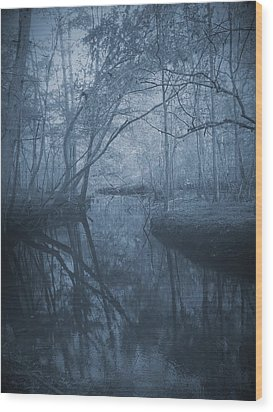 Waccasassa River Wood Print by Phil Penne