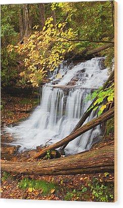 Wagner Falls In Autumn Wood Print by Craig Sterken