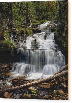 Wagner Falls Wood Print by Tim Hawkins