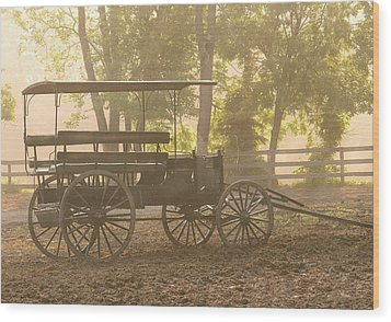 Wagon - Abe's Buggie Wood Print by Mike Savad