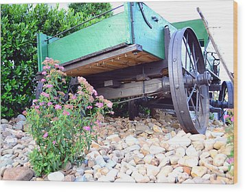 Wagon And Blooms Wood Print by Larry Bishop