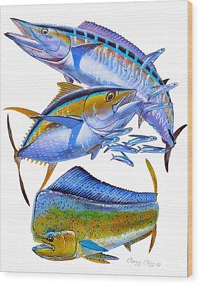 Wahoo Tuna Dolphin Wood Print by Carey Chen