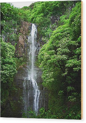 Waikani Falls At Wailua Maui Hawaii Wood Print by Connie Fox
