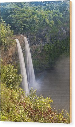 Wailua Falls - Kauai Hawaii Wood Print by Brian Harig