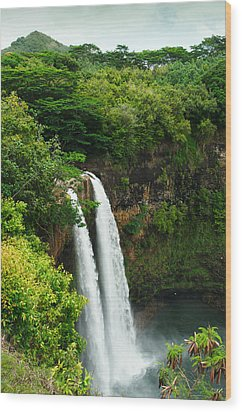 Wailua Falls Kauai Wood Print by Photography  By Sai