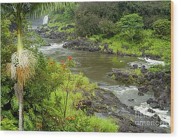 Wailuka River Wood Print by Bob Phillips
