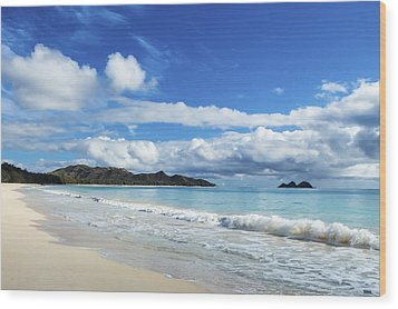 Waimanalo And Bellows Beach 1 Wood Print