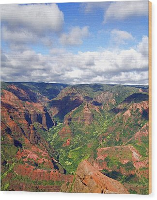 Waimea Canyon Wood Print by Amy McDaniel